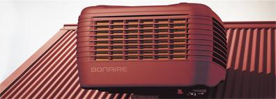bonaire integra red